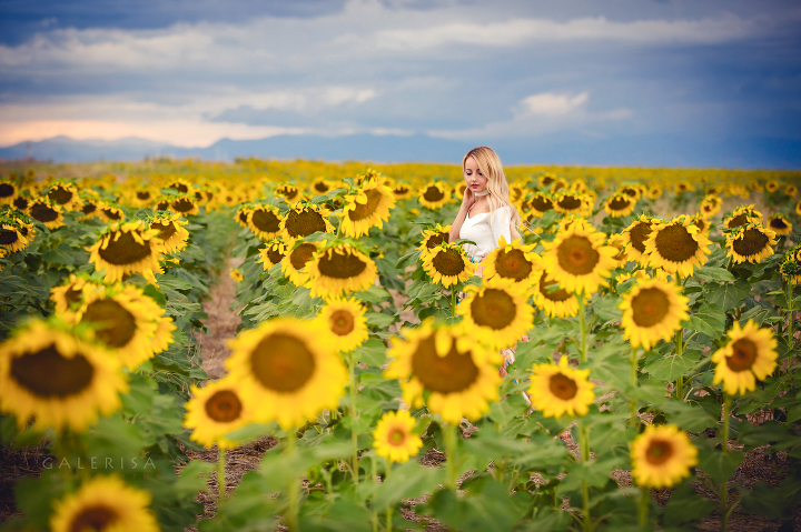 modaprints-white-off-shoulder-top-maxi-flowy-skirt-in-sunflower-field-galerisa-photography-2a